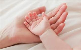 Вредно ли узи первых неделях беременности